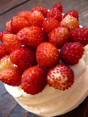 dessert aux fraises des bois meringue et chantilly la. Black Bedroom Furniture Sets. Home Design Ideas